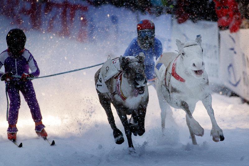 Sami Week de Tromso