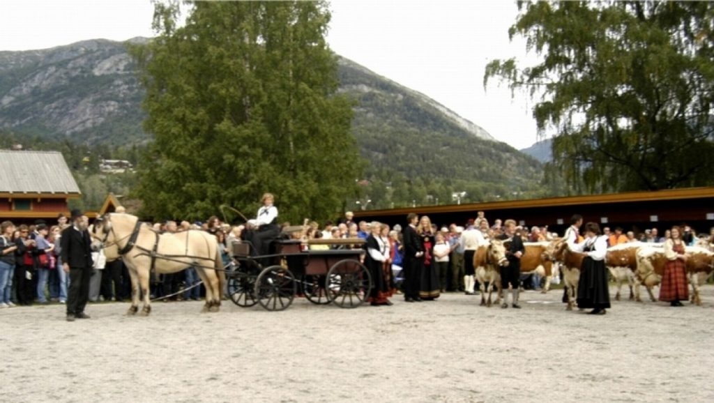 Dyrsku'n Festival (Seljord) 12
