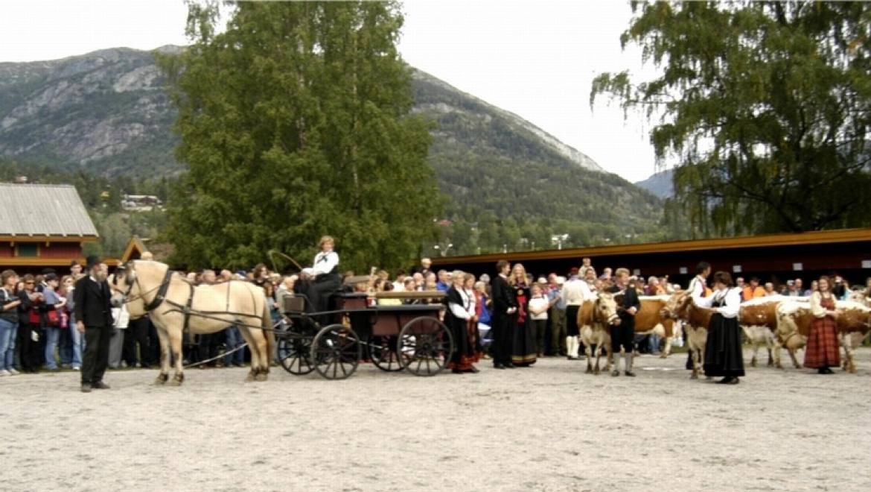 Dyrsku'n Festival (Seljord) 1